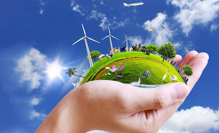 Победа экологов